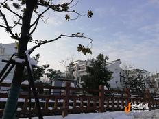 南京市 浦口区 汤泉街道 550平方米 独立院落 可使用70年